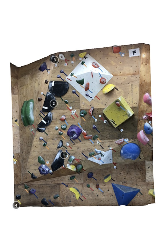 Climbing Gym Walrus 3Q