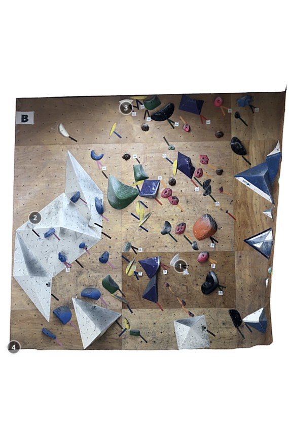 Climbing Gym Walrus 2Q