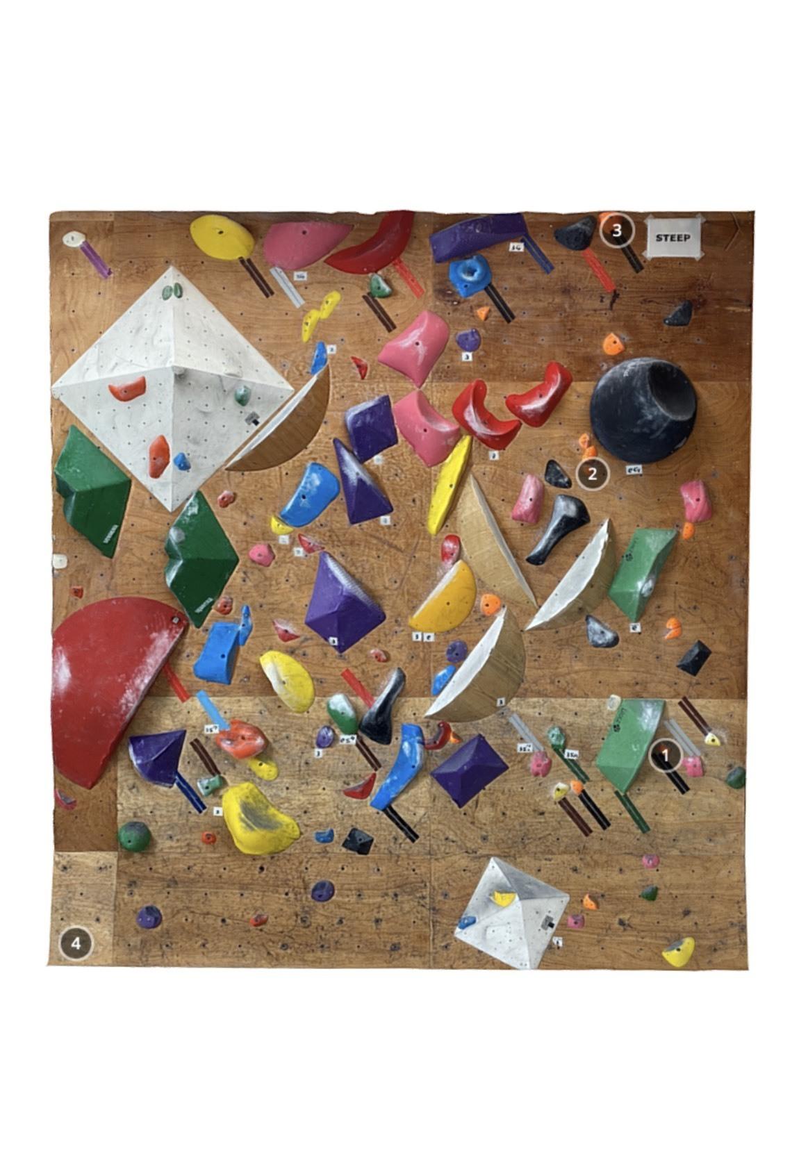 Climbing Gym Walrus 1D