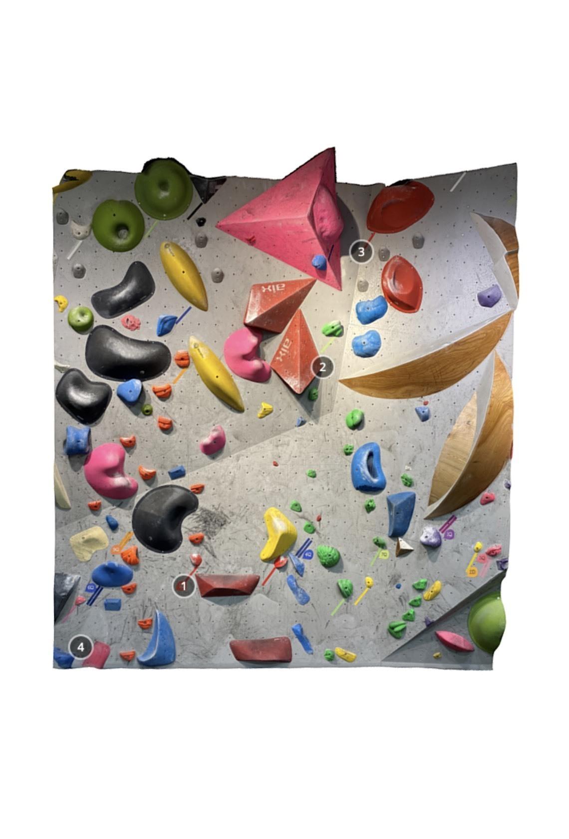 DOGWOOD Climbing Gym Chofu 1D